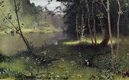 Forrest River