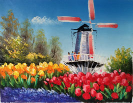 Red Blue Yellow Tulips and Windmill