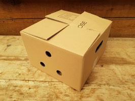 Wachteltransportbox aus Karton
