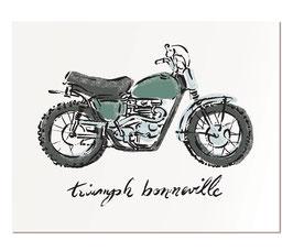 """Triumph Bonneville   11x14"""" print"""