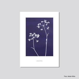 Artprint von Atelier Mirla - A4 Posterdrucke, verschiedene Motive