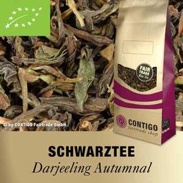 Darjeeling Autumnal Schwarztee von CONTIGO - Bio-Teespezialität