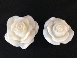 Rosenblüte gross und mittel