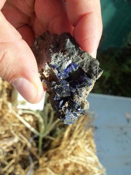 azurite cristalisée sur gangue