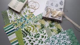 Kreativ Kit - Ewiges Grün