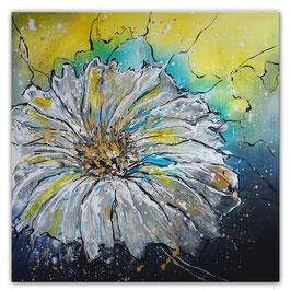 Blumenbild Margerite Blumen Gemälde Malerei 80x80