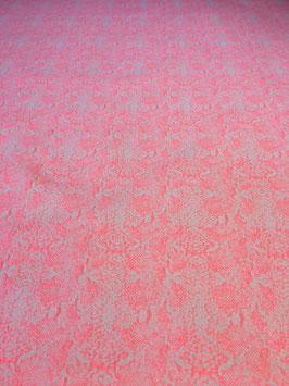 Webware Pinkblüte