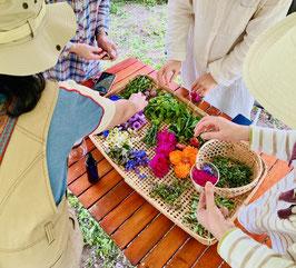 バイオダイナミック農法とアーユルヴェーダ スキンケアとホームケアアイテムづくり