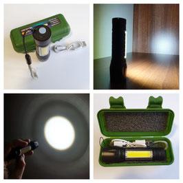LED Flashlight double