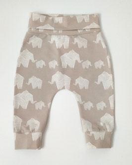 Šedé sloníkové nohavice