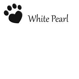 Futterbarplatte in der Farbe White Pearl