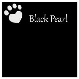 Futterbarplatte in der Farbe Black Pearl