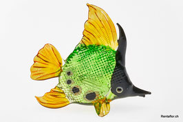 Fisch F01