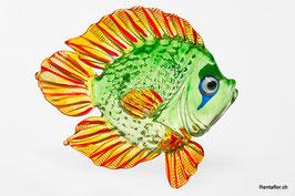 Fisch F09