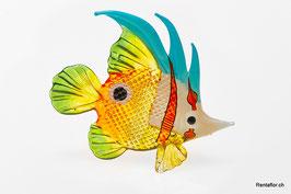 Fisch F05