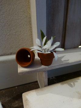 """Wichtel Türe Zubehör """" Blumen Töpfli"""""""