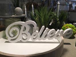 Schriftzug Believe
