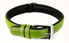 Hunde Leder Halsband aus weichem Rindsleder - gepolstert in grün - für mittelgroße Hunde 25mm x 50cm - Premium Qualität