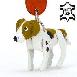 "Foxhound ""Filou"""