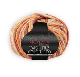 Wash Filz Colori 100   704