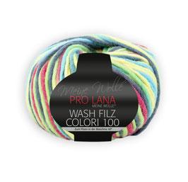 Wash Filz Colori 100   703