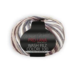 Wash Filz Colori 100   707