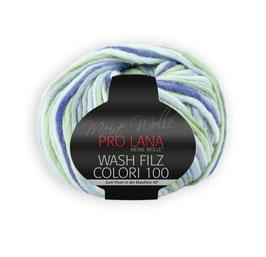 Wash Filz Colori 100   709