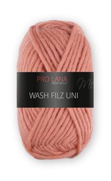 Pro Lana Wash and Filz uni 134