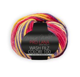 Wash Filz Colori 100   705