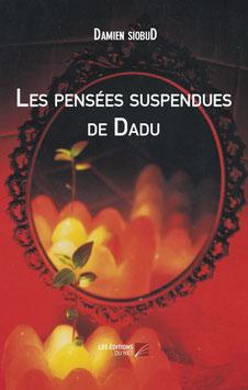 Les pensées  suspendues de DADU - par Damien Siobud