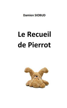 le Recueil de Pierrot - Edition de luxe