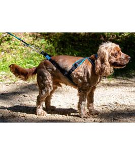 Inlandsis Open Back Zuggeschirr für Hunde bis 15 Kg