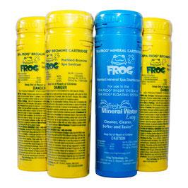Spa-Frog Whirlpooldesinfektion Sparpaket 3+1