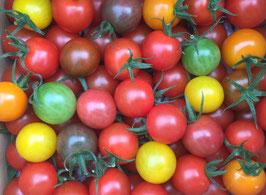 《 美トマト(7色) 》1kg