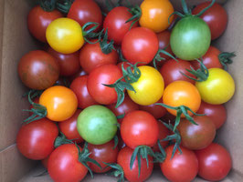 《 美トマト(5色) 》2kg