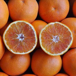 Oranges semi-sanguines