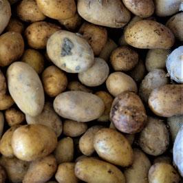 Pommes de terre grenaille
