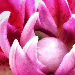 Yoni Egg Romantik... aus Rosenquarz