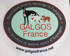 Autocollant intérieur ou extérieur GALGOS FRANCE