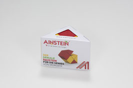 AINSTEIN 6 - STARTER