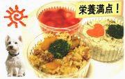 【即日対応可能】栄養満点セット(煮干しのムース、玄米リゾット、イチゴのムース)(愛犬用)