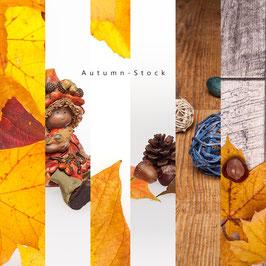 Autumn-Stock Collection (für kommerzielle Nutzung)