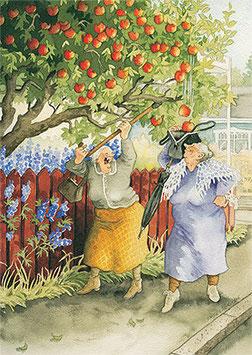 APPELS UIT DE BOOM SCHUDDEN (011) - INGE LOOK: AUNTIES