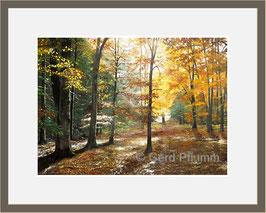 Herbstwald No 7, Miniatur-Bild