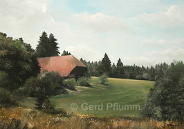 Schwarzwaldhaus No 6