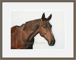 Braunes Pferd, Miniatur-Bild