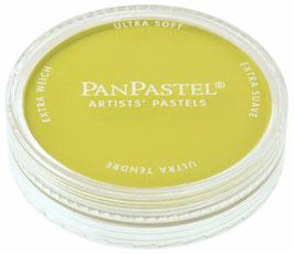 PanPastel Bright Yellow Green