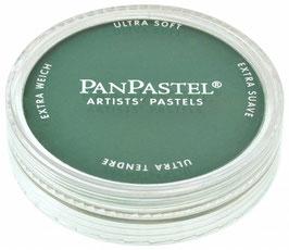 PanPastel Green Shade