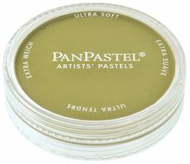 PanPastel Bright Yellow Green Shade