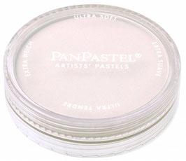 PanPastel Paynes Grey Tint 2